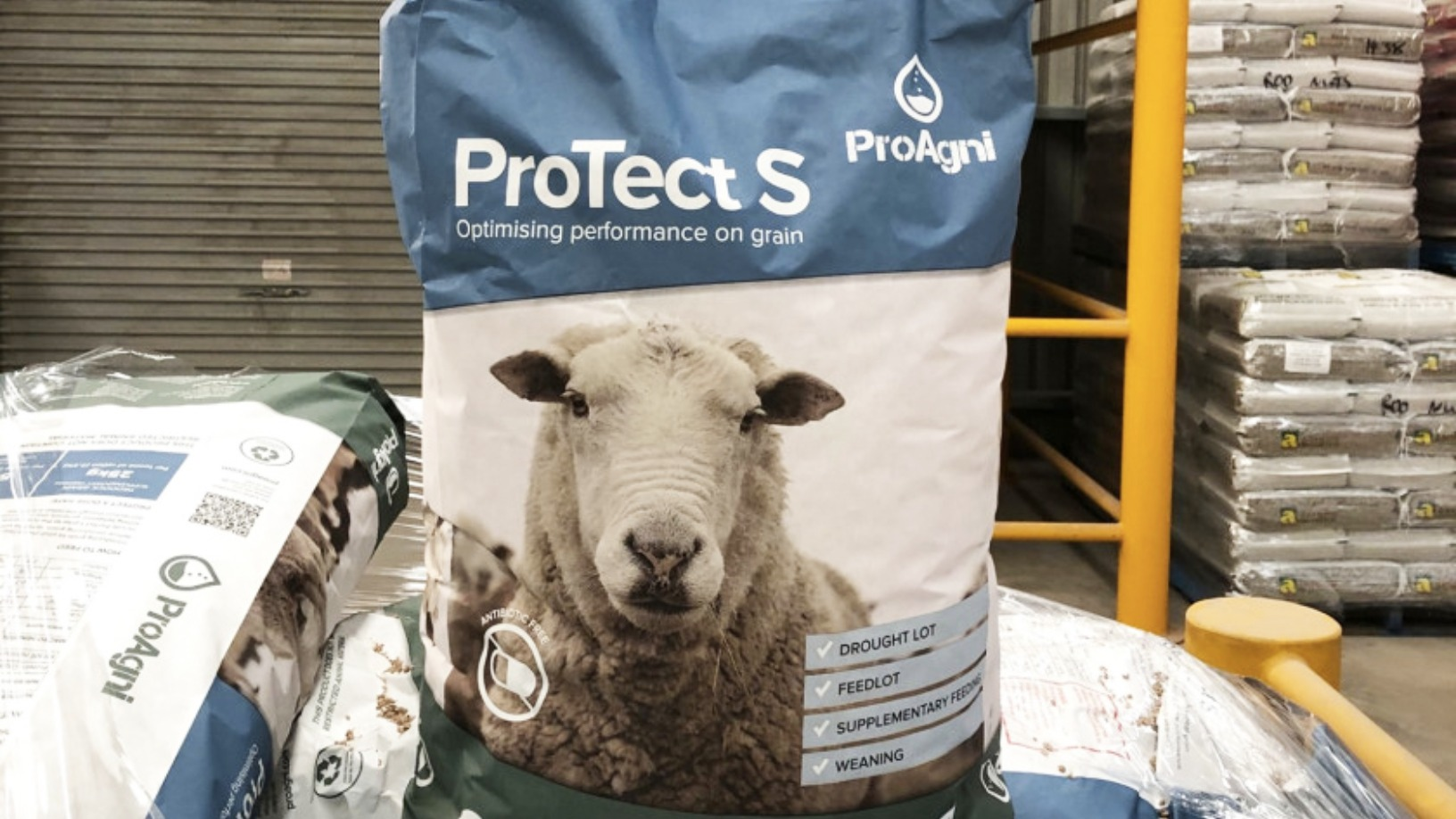 Inspired by kangaroos, ProAgni wants to wean the livestock farming industry off antibiotics