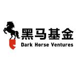 Dark Horse Ventures