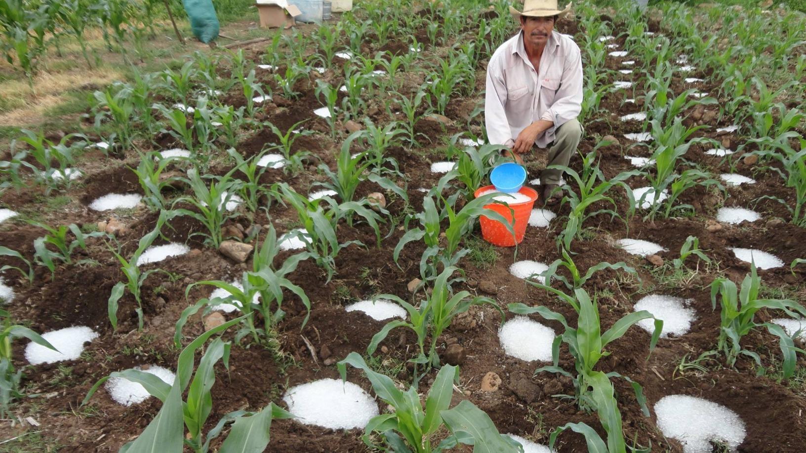 Lluvia Sólida: An economic lifeline for farmers in drier, unpredictable climate conditions