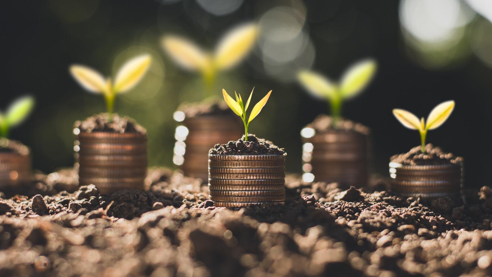 Sequoia China Seed Fund: Growing an era of deep-tech startups