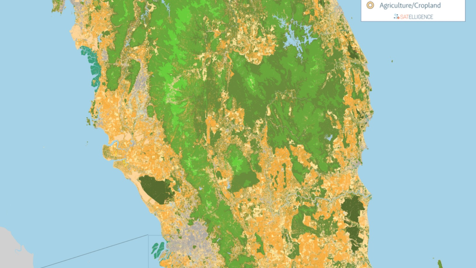 Satelligence: Satellite data and AI helping corporate giants source commodities more sustainably