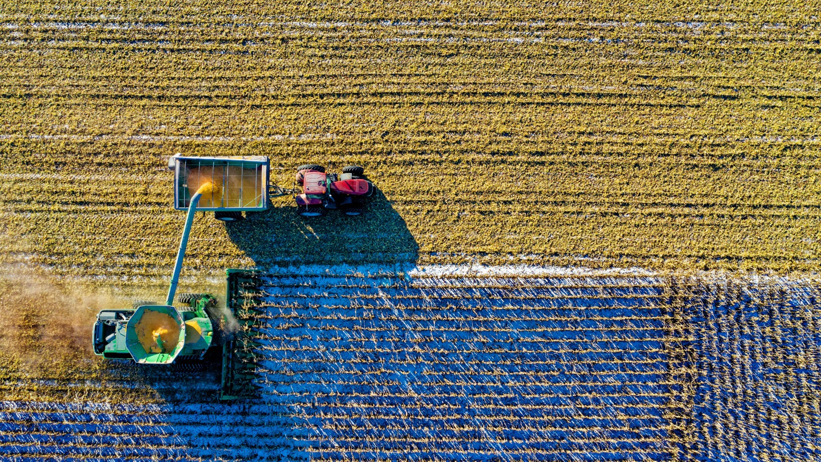 FluroSat: Combining satellite imagery and farm data to predict crop issues