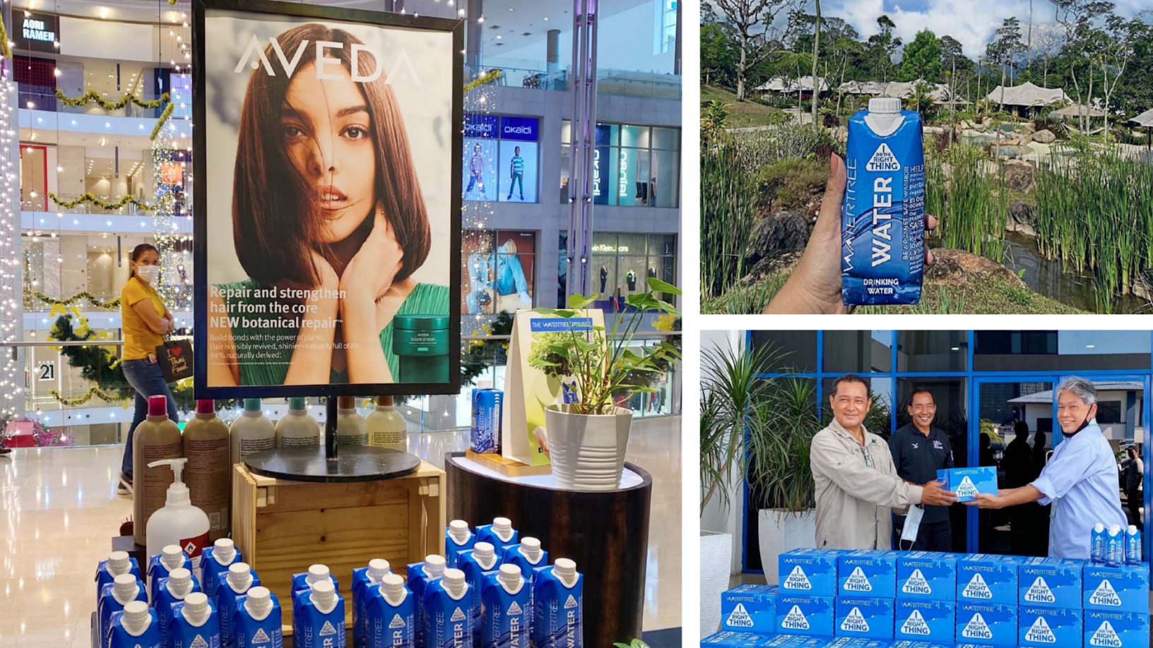 The Watertree Project: Eliminating single-use plastic water bottles in Malaysia