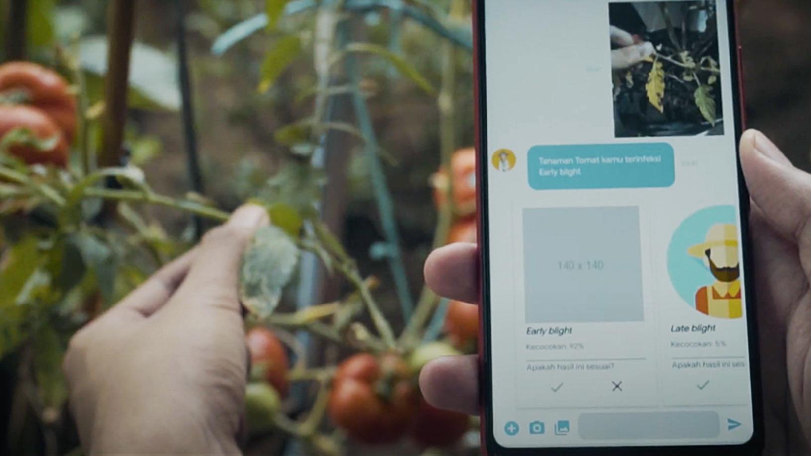 Neurafarm: Putting an AI plant doctor in farmers' hands