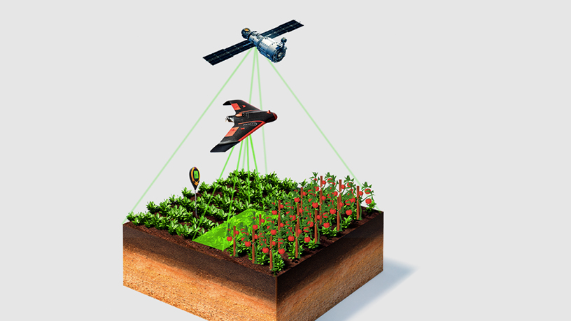 HEMAV: World's leading drone services company for agriculture