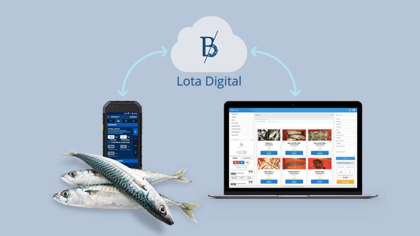 Lota Digital: Disrupting fishing in Portugal for a sustainable future