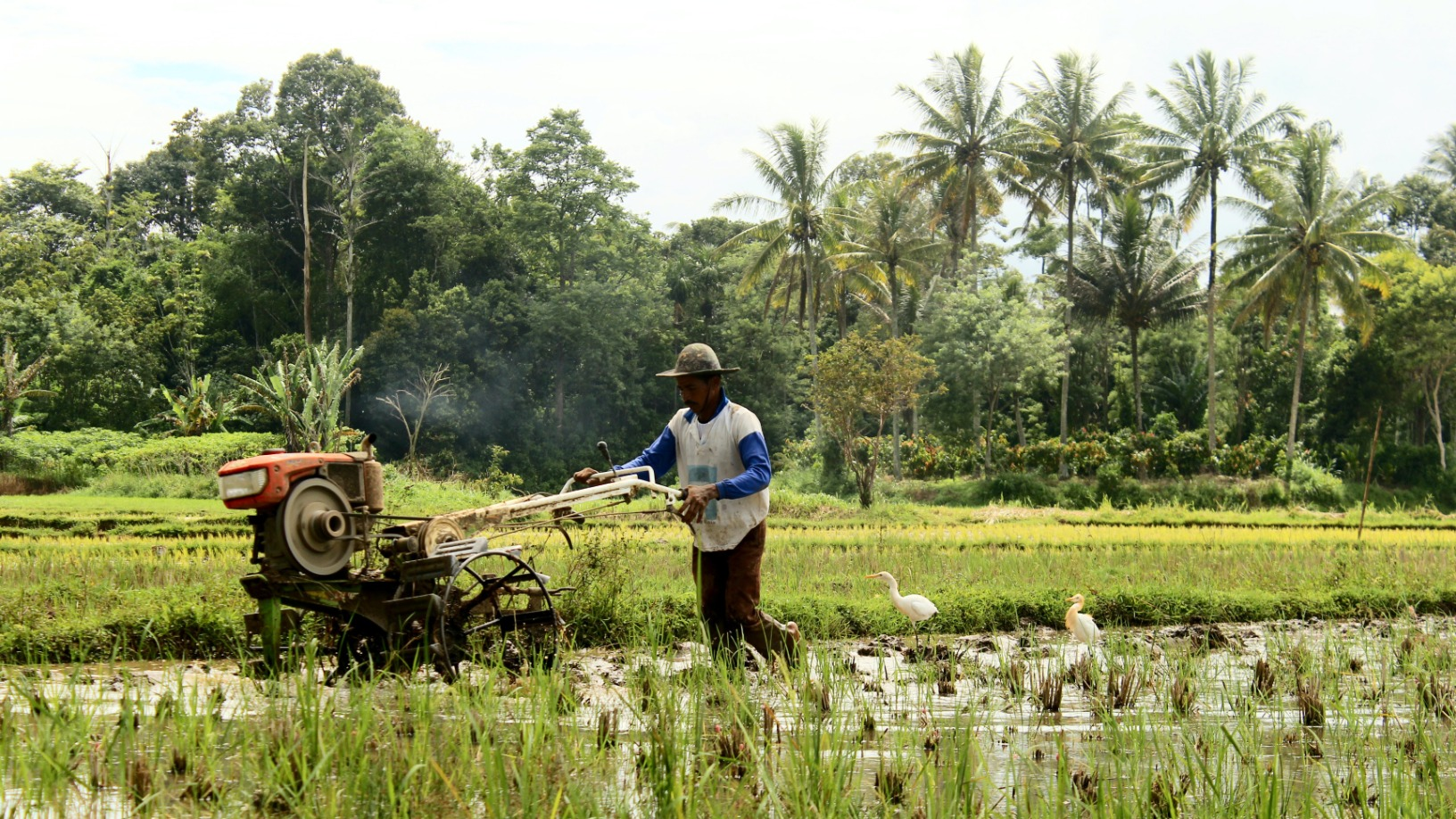 8villages to refocus business, shelve B2C agri-ecommerce ops as Covid boost proves short-lived