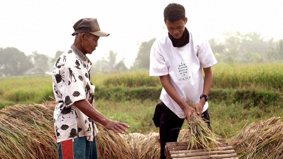 Indonesia agritech startup HARA goes on the blockchain