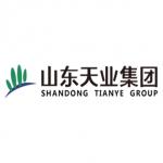 Shandong Tianye Group